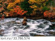 Купить «View of Yukawa River flow rapidly passing rocks in colorful foliage of autumn season at the city of Nikko, Tochigi Prefecture, Japan», фото № 33786574, снято 13 июля 2020 г. (c) easy Fotostock / Фотобанк Лори