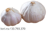 Many garlic isolated over white background. Стоковое фото, фотограф Яков Филимонов / Фотобанк Лори