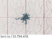 Купить «Grass weeds trickle through the paving slab.», фото № 33794418, снято 16 августа 2017 г. (c) Акиньшин Владимир / Фотобанк Лори