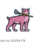Sports mascot icon illustration of a lynx, Canada lynx, Eurasian lynx or Bobcat biting a lacrosse stick viewed from side on isolated background in retro style. Стоковое фото, фотограф Zoonar.com/aloysius patrimonio / easy Fotostock / Фотобанк Лори