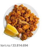 Battered fried baby squid with lemon. Стоковое фото, фотограф Яков Филимонов / Фотобанк Лори