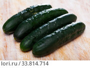 Cucumbers on wooden background. Стоковое фото, фотограф Яков Филимонов / Фотобанк Лори
