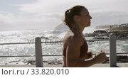 Купить «Sporty Caucasian woman exercising on a promenade on seaside», видеоролик № 33820010, снято 8 августа 2019 г. (c) Wavebreak Media / Фотобанк Лори