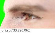 Close up of a Caucasian man eyes on green background. Стоковое видео, агентство Wavebreak Media / Фотобанк Лори