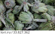 Купить «Closeup of fresh young buds of artichokes. Food background», видеоролик № 33827362, снято 20 ноября 2019 г. (c) Яков Филимонов / Фотобанк Лори