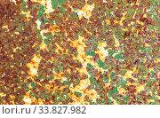 Купить «Rusty metal texture as background», фото № 33827982, снято 25 августа 2019 г. (c) FotograFF / Фотобанк Лори