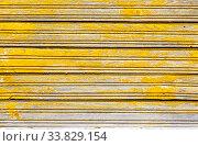 Купить «Wooden boards with cracks as background», фото № 33829154, снято 25 августа 2019 г. (c) FotograFF / Фотобанк Лори