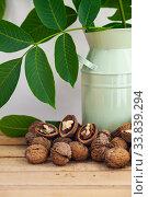 Купить «Walnuts and leaves», фото № 33839294, снято 11 мая 2020 г. (c) Елена Блохина / Фотобанк Лори