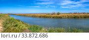Купить «Reed-covered estuary near the village of Koblevo in Ukraine», фото № 33872686, снято 22 сентября 2019 г. (c) Sergii Zarev / Фотобанк Лори