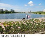 Парковая зона отдыха около Гольяновского пруда. Район Гольяново. Город Москва. Редакционное фото, фотограф lana1501 / Фотобанк Лори