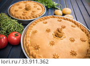 Купить «Two potato pies with edible decorations on top - greens and tomatoes on the sides», фото № 33911362, снято 12 мая 2020 г. (c) Константин Шишкин / Фотобанк Лори