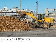 Купить «Front-end loader in action on the loading of sugar beet at a sugar factory», фото № 33929402, снято 9 октября 2015 г. (c) Nataliia Zhekova / Фотобанк Лори