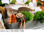 Freshly caught Sea fishes, lobster and other seafood. Стоковое фото, фотограф Nataliia Zhekova / Фотобанк Лори
