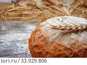 Freshly baked bread and spikelets on wooden texture board. Стоковое фото, фотограф Nataliia Zhekova / Фотобанк Лори