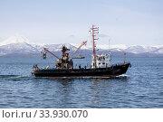 МРС 150-146 в Авачинской бухте. Редакционное фото, фотограф Алексей Шматков / Фотобанк Лори