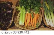 Купить «Raw fresh vegetables assortment on counter in supermarket», видеоролик № 33930442, снято 2 июля 2020 г. (c) Яков Филимонов / Фотобанк Лори