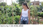 Positive female horticulturist standing near vegetables seedlings in garden. Стоковое видео, видеограф Яков Филимонов / Фотобанк Лори