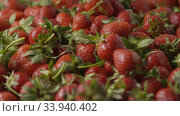 A close-up of a red ripe juicy strawberry slow falls by a group on a tray with berries. Berries background. Slow motion video. Soft focus. Full HD video, 240fps,1080p. Стоковое видео, видеограф Ярослав Данильченко / Фотобанк Лори