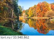 Осенний пейзаж с разноцветными деревьями и отражением в пруду в парке Царицыно в Москве (2018 год). Стоковое фото, фотограф Baturina Yuliya / Фотобанк Лори