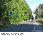 Велосипедная дорожка в парке. Стоковое фото, фотограф Елена Осетрова / Фотобанк Лори