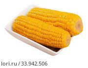 Купить «Two cooked corncobs in bowl», фото № 33942506, снято 10 июля 2020 г. (c) Яков Филимонов / Фотобанк Лори