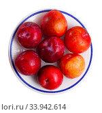 Купить «Tasty ripe red plum», фото № 33942614, снято 5 июля 2020 г. (c) Яков Филимонов / Фотобанк Лори