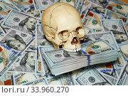 human skull and dollars. Стоковое фото, фотограф Nataliia Zhekova / Фотобанк Лори