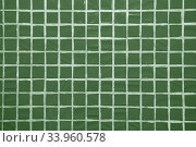 Texture of fine little ceramic tiles background. Стоковое фото, фотограф Nataliia Zhekova / Фотобанк Лори