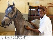 Man caring for horse with electric trimmer. Стоковое фото, фотограф Яков Филимонов / Фотобанк Лори