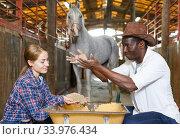 Man and woman delivering oats at stable. Стоковое фото, фотограф Яков Филимонов / Фотобанк Лори