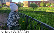 Купить «Happy toddler child wearing shirt and hat touching green grass and flowers while walk on pathway in urban park, one year old kid», видеоролик № 33977126, снято 10 июня 2020 г. (c) Кекяляйнен Андрей / Фотобанк Лори