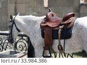 Купить «Mzcheta, saddled horse is waiting for his rider on a road», фото № 33984386, снято 21 июля 2018 г. (c) Caro Photoagency / Фотобанк Лори