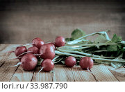 Купить «On the wooden surface of the table is a bunch of young radishes with green leaves.», фото № 33987790, снято 7 июля 2020 г. (c) easy Fotostock / Фотобанк Лори