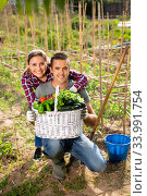 Купить «Positive young family couple with harvest of vegetables», фото № 33991754, снято 7 июля 2020 г. (c) Яков Филимонов / Фотобанк Лори