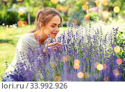 young woman smelling lavender flowers in garden. Стоковое фото, фотограф Syda Productions / Фотобанк Лори