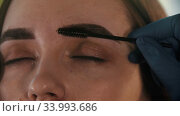 Brow master brushing finished tinted eyebrows. Стоковое видео, видеограф Константин Шишкин / Фотобанк Лори