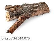 Купить «Single poplar log horizontally isolated on white background», фото № 34014070, снято 6 июля 2020 г. (c) easy Fotostock / Фотобанк Лори