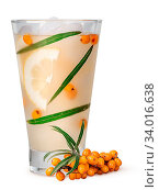 Купить «Lemonade from sea buckthorn isolated on white background. Leaves and berries of sea buckthorn in a misted glass with ice.», фото № 34016638, снято 4 июля 2020 г. (c) easy Fotostock / Фотобанк Лори