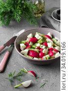 Купить «Radish, cucumber, kiwi, cheese and dill salad in a bowl on gray grunge concrete background.», фото № 34019166, снято 11 апреля 2019 г. (c) Nataliia Zhekova / Фотобанк Лори