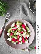 Купить «Radish, cucumber, kiwi, cheese and dill salad in a bowl on gray grunge concrete background. Seasonal Cooking, food styling.», фото № 34019170, снято 11 апреля 2019 г. (c) Nataliia Zhekova / Фотобанк Лори