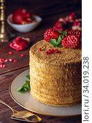 Купить «Homemade honey cake decorated with pomegranate berries and mint leaves. Dark and Moody», фото № 34019238, снято 6 февраля 2019 г. (c) Nataliia Zhekova / Фотобанк Лори