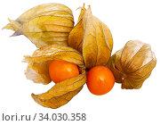 Купить «Physalis peruviana fruit closeup», фото № 34030358, снято 2 июля 2020 г. (c) Яков Филимонов / Фотобанк Лори