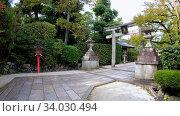 Купить «A kaku-doro (square) stone lantern with the torii gate in the Japanese shrine. Kyoto. Japan», видеоролик № 34030494, снято 7 июня 2020 г. (c) Serg Zastavkin / Фотобанк Лори
