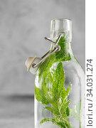 Купить «Swing Top Glass Bottle with cold water with fresh mint leaves on grey concrete background.», фото № 34031274, снято 10 июня 2019 г. (c) Nataliia Zhekova / Фотобанк Лори