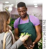 Купить «Florist consulting female client about potted houseplant», фото № 34038162, снято 14 февраля 2019 г. (c) Яков Филимонов / Фотобанк Лори