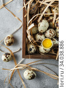 Купить «Quail eggs. Flat lay composition with small quail eggs in the wooden box on the concrete background. One broken egg with a bright yolk.», фото № 34038886, снято 15 апреля 2019 г. (c) Nataliia Zhekova / Фотобанк Лори
