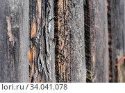 Купить «Cracked aged weathered wooden boards, selective focus», фото № 34041078, снято 10 июля 2020 г. (c) age Fotostock / Фотобанк Лори