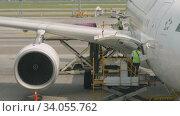 Купить «Uploading cargo onboard the aircraft», видеоролик № 34055762, снято 14 ноября 2018 г. (c) Игорь Жоров / Фотобанк Лори