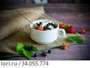 fresh homemade cottage cheese with summer berries. Стоковое фото, фотограф Peredniankina / Фотобанк Лори