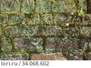Купить «Moisture aged cement brick wall background with good weathered texture», фото № 34068602, снято 10 июля 2020 г. (c) easy Fotostock / Фотобанк Лори